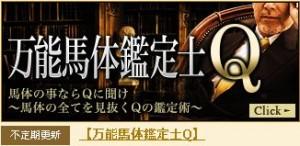 ギャロップジャパン-万能馬体鑑定士