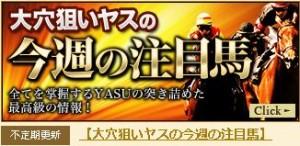 ギャロップジャパン 大穴狙いヤスの今週の注目馬