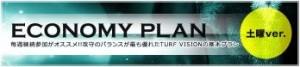 ターフビジョン ECONOMY-PLAN