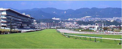 阪神競馬場の情報
