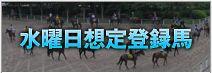ワールド競馬WEB 重賞水曜想定登録馬