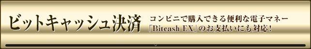 ギャロップジャパン ビットキャッシュ