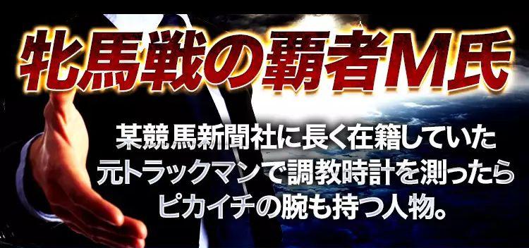 シンジケート 牡馬戦の覇者M氏