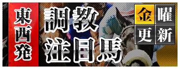 栗東会議-調教注目馬