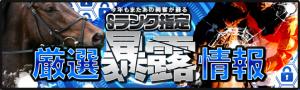 競馬インサイトのキャンペーン情報_Sランク指定_厳選暴露情報